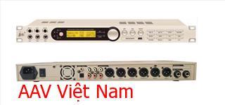 AAV X8